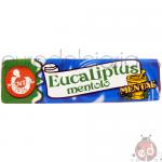 Sticks Eucaliptus Fassi x30